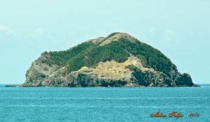 isla olocuita
