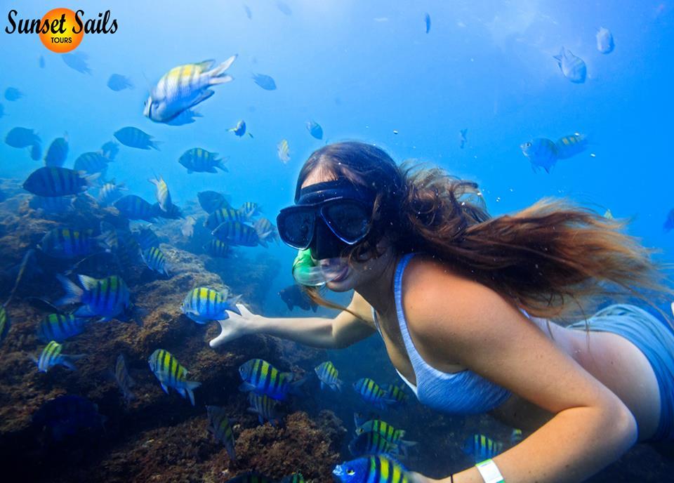 snorkeling tour in manuel antonio costa rica